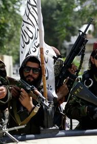 Талибы не в состоянии принести мир в Афганистан, начинается новая гражданская война