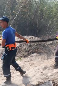 В поселке Стеклянный Нижегородской области из-за лесного пожара сгорело 11 домов