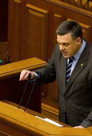 Тягнибок призвал ввести для «возвращения» Крыма Украине санкции, от которых в России бы «выли и визжали»