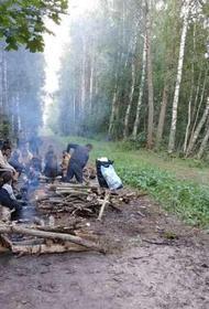 Латвия разрешила трем семьям нелегалов пересечь границу