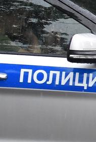 В Петербурге машина сбила двух женщин у трамвайной остановки