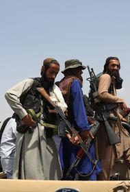 Портал NRK: успех «Талибана» в Афганистане «может бумерангом ударить по России»