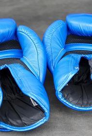 В школах Челябинской области введут уроки бокса