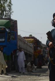 Талибы заявили, что влияние РФ поможет решить ситуацию в Панджшере