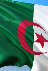 Алжир разорвал дипломатические отношения с Марокко