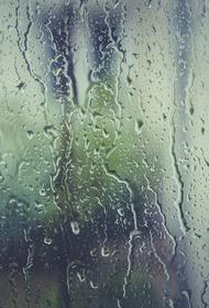 Синоптик Леус рассказал о надвигающихся на Москву дождях