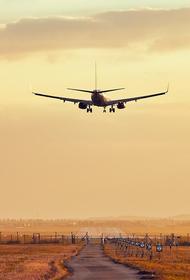 Вылетевший из Челябинска самолет столкнулся с птицей в аэропорту