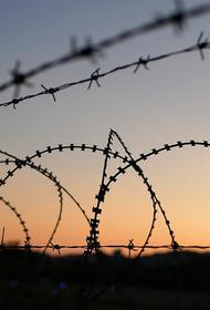 Куда пропали застрявшие беженцы с границы Латвии и Беларуси