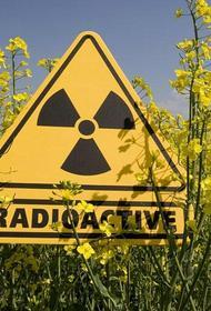 В Японии скопился оружейный плутоний в промышленных масштабах