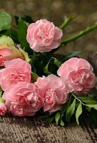 В Челябинской области букет цветов можно купить в пределах тысячи рублей