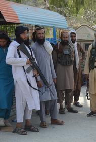 Пентагон: талибы выпустили из афганских тюрем тысячи заключенных