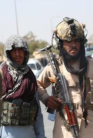 Игорь Стрелков: Россия получит «миллионные» волны беженцев в случае экспансии «Талибана» в Среднюю Азию