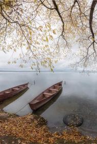 Туман – дело таинственное