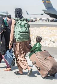 Представитель МИД Кабулов заявил о вероятном нахождении террористов и радикалов среди беженцев из Афганистана