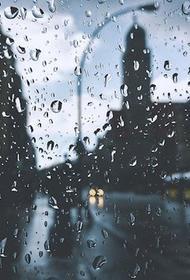 В Московской области в ближайшие часы ожидается гроза с дождем