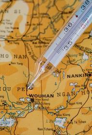 Китайские эксперты считают, что коронавирус в Ухань могли завезти поставщики полуфабрикатов из других стран