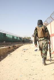 Директор Второго департамента Азии МИД Кабулов заявил, что РФ будет налаживать контакты с талибами*