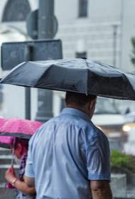 Синоптик Позднякова предупредила москвичей о похолодании и дождях с 1 сентября