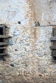 Кубанский депутат Наталья Костенко призвала разобраться с государственным бесхозом в регионе