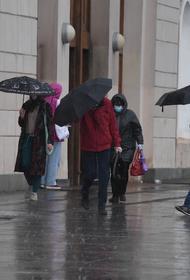 Синоптик Позднякова предупредила москвичей о похолодании до плюс 14 градусов на выходных