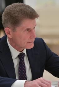Глава Приморья Кожемяко обратился с просьбой к Владимиру Путину поддержать газификацию Дальнегорска
