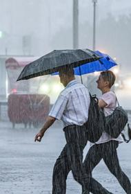 В Москве 1 сентября пройдут ливни с грозами