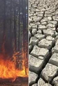ВМО ООН сообщила о том, что за последние 50 лет количество природных катаклизмов увеличилось в пять раз