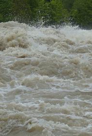 Жертвами наводнения в Нью-Йорке стали девять человек