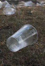 Глава Минприроды Козлов заявил, что запрет на производство товаров из пластика планируется ввести в 2024 году