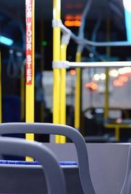 Аналитик Кусков поддержал идею о введении биометрии в общественном транспорте