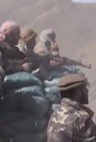 Талибы завязли в боях в Панджшере