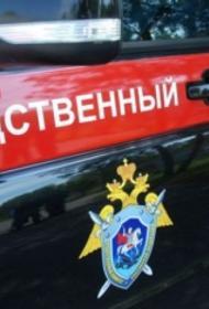 Суд Владикавказа арестовал мать, cтолкнувшую своего девятилетнего сына в реку