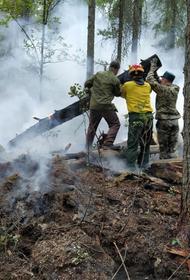 У Тюменской области нет денег на исследования и восстановления последствий лесных пожаров
