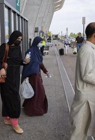 Появились реальные подозрения, что среди афганских беженцев есть террористы