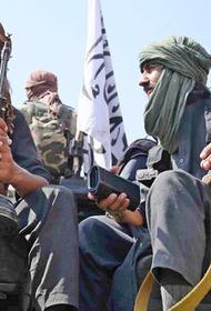 Что можно ожидать в странах Центральной Азии со сменой власти в Афганистане