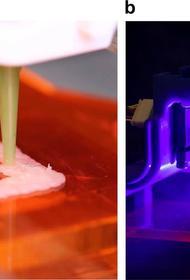Ученые напечатали на 3D принтере курятину и поджарили лазером