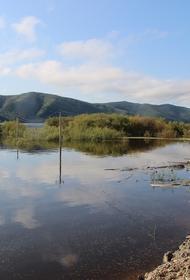 Гребень амурского паводка сместился к Комсомольску-на-Амуре