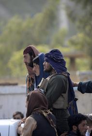 Представитель талибов Шахин заявил о контроле почти над всей провинцией Панджшер