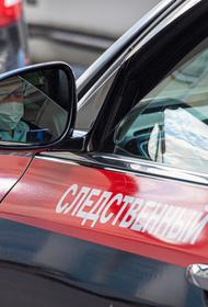 Следственный комитет показал видео работы с подозреваемым в убийстве школьниц в Кузбассе