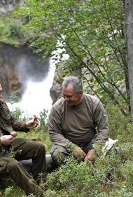 Телеведущий Новоженов: если Путину и Шойгу будут мешать комары, то в тайге осушат болота