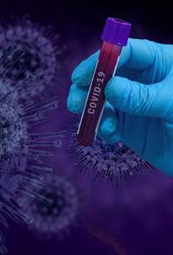 Вирусолог Колбасов, комментируя заявление ВОЗ о выходе мира на плато по заболеваемости COVID-19: «Сложно с этим спорить»