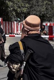 Источник в движении талибов: инаугурация нового правительства Афганистана состоится 11 сентября