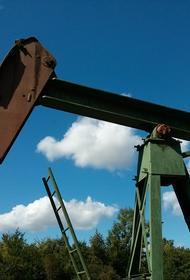 Вице-премьер Абрамченко заявила, что в России число взрывоопасных заброшенных нефтяных скважин составляет около 26 тысяч