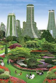 Власти Нью-Йорка решили защитить город от наводнений деревьями и цветами