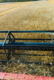 Аграрии Челябинской области прокомментировали меры поддержки, предложенные губернатором