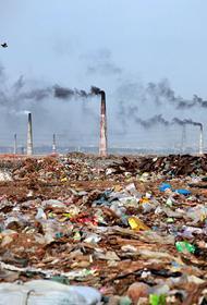 Международный союз охраны природы призвал страны усилить защиту экологии планеты