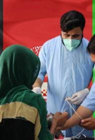 3000 рублей за спасение жизней: талибы предложили врачам в Афганистане чудовищно низкую зарплату