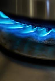 Депутат Рады Скороход призвала власти Украины провести переговоры с Россией по вопросу закупки газа