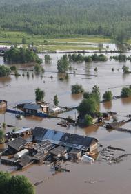 Мишустин распорядился направить помощь пострадавшим от паводка