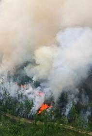 МЧС прогнозирует повышенный класс пожарной опасности в лесах Якутии, на Урале и юге России